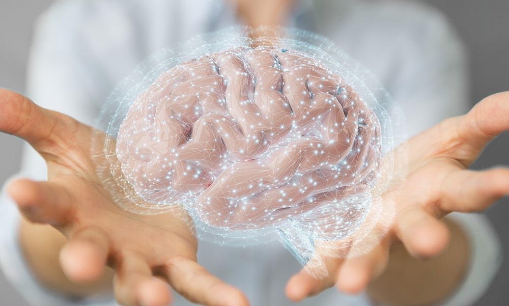 Why Your Brain Needs Supervision